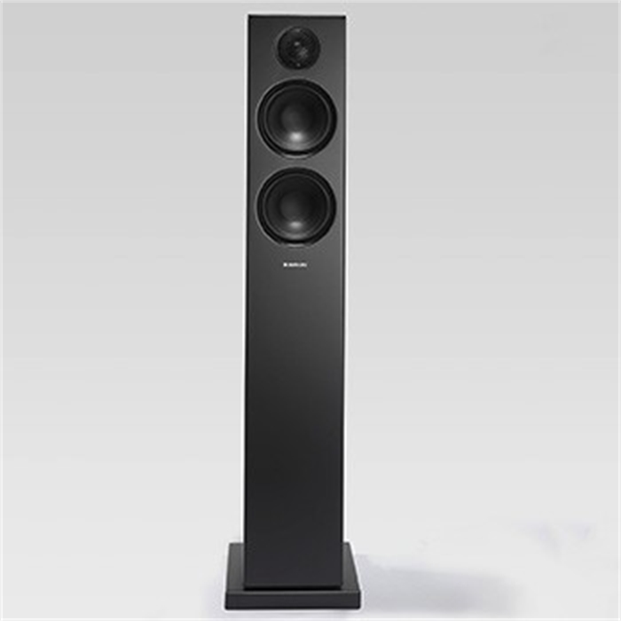 Picture of AUDIO PRO 14170 - Bluetooth® floorstanding loudspeakers Addon T20, Black, 2 pieces