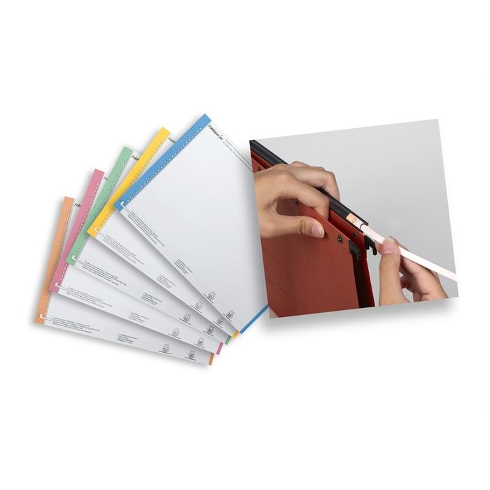 Suspension Files Label Sheet Nr 0; Bag Of 10; Cardboard Assorted, Picture 3