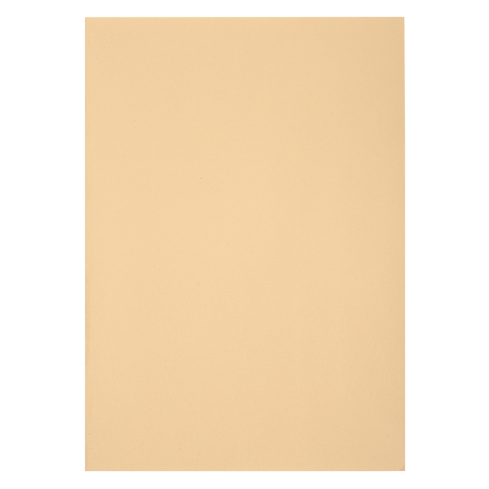 "Picture of ""Pack of 250 square cut folders FOREVER 60 gsm, 22x31cm ""."